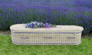 Willow coffin curved purple band